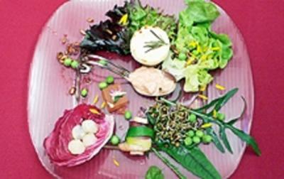Canapé mit Ziegen-Käse u. Palmherzen in geräucherter Entenbrust - Rezept