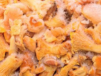 """Eierschwammerl einfrieren für die """"Schwammerllose Zeit"""" - Rezept - Bild Nr. 2"""
