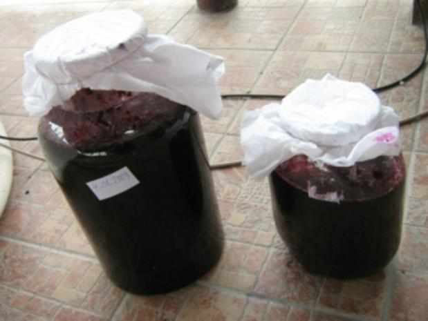 Brombeeren Wein - Rezept - Bild Nr. 4
