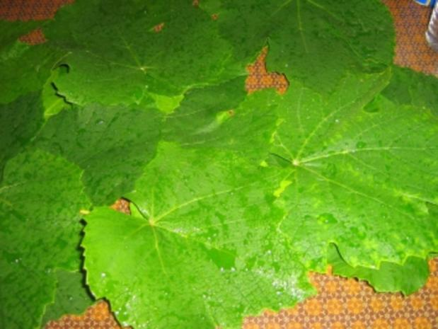 Rajmes - Sarma  - Gefüllte Weinblätter mazedonische Art - Rezept - Bild Nr. 2