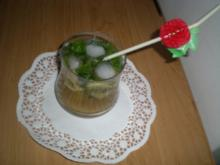 Drinks & Cocktails : Mojito aus Kuba - Rezept