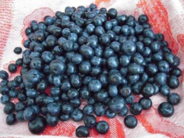 Blaubeerkuchen - Rezept - Bild Nr. 4