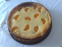 Quarkkuchen mit Mandarinen - Rezept