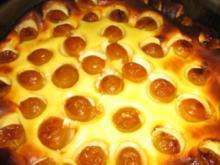 Käse - Mirabellen - Kuchen - Rezept