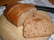 Brot/Brötchen - Brennessel - Vollkornbrot - Rezept