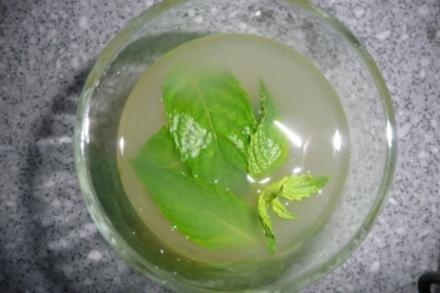 Ginger-Limo - Rezept