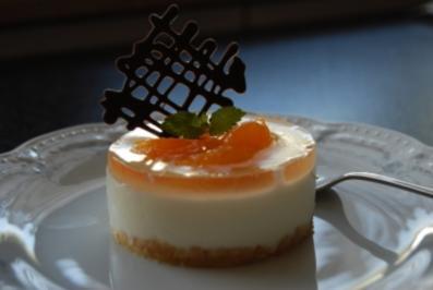 Kuchen/Gebäck ~ Mandarinen-Joghurt-Törtchen - Rezept