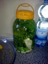 Salzgurken oder saure Gurken - Rezept