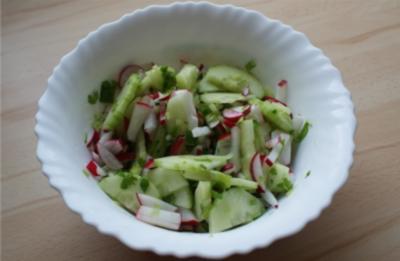 frischer Frühlingssalat - Rezept