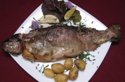Forelle selbst geräuchert mit Kartoffeln und Dip - Rezept