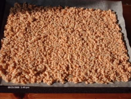 Orangen - Reis - Crispies - Rezept