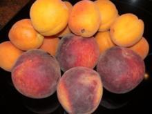 DESSERT: Pfirsich Melba - Rezept