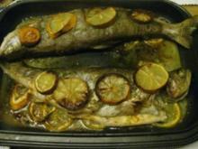 Forellen gebacken ala Sonni - Rezept