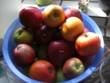 Kuchen- Apfeltorte nach Großmutters Rezept - Rezept