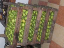 Apfelgelee mit Ingwernote - Rezept
