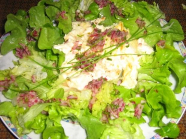Gegrillter Schafskäse auf Blattsalat - Rezept - Bild Nr. 9