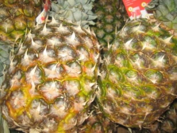 GETRÄNKE: Pinacolada ohne Alkohol - Rezept