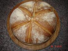Brot + Brötchen : Würziges Bierbrot - Rezept