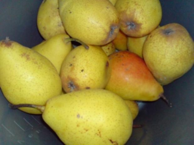 Apfel-Birnen-Saft - Rezept - Bild Nr. 2