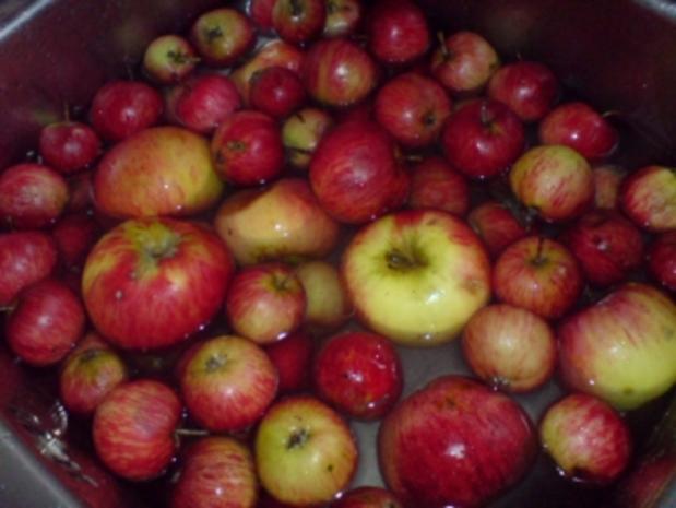 Apfel-Birnen-Saft - Rezept - Bild Nr. 7
