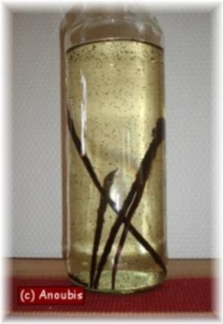 Angesetzter - Vanillelikör - Rezept