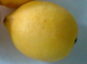 Sangria-Bowle - Rezept