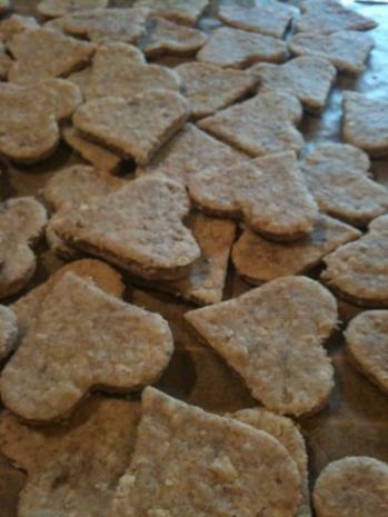 Hundekekse Mit Thunfisch Rezept Mit Bild Kochbar De