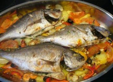 Fisch --- Dorade auf Gemüse im Backofen - Rezept