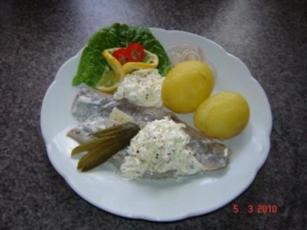 Fisch : Matjes mit Frischkäse-Sauce - Rezept