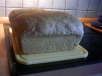 Kartoffel-Buttermilch-Mehrkornbrot (ergibt 2 Brote) - Rezept