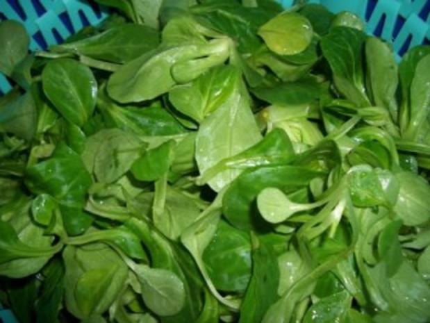 Salat- Mausohrsalat mit Lachsstreifen - Rezept - Bild Nr. 2