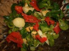Salat- Mausohrsalat mit Lachsstreifen - Rezept