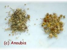 Heiltee - Teemischung bei entzündeter Magenschleimhaut - Rezept