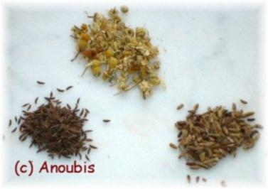 Heiltee - Teemischung bei leichter Magenverstimmung - Rezept