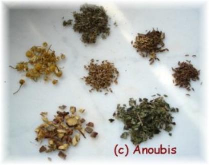Heiltee - Teemischung bei Magenproblemen nach Glutamatgenuss - Rezept