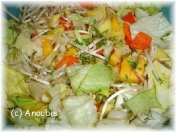 Salat - Mango-Sprossen-Salat - Rezept