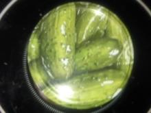 Fenchelgurken - Rezept
