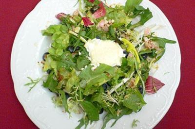 Rezept: Gratinierter sardischer Ziegenkäse auf Wildkräutern u. Blattsalat mit Heidelbeeren (Sardinien)
