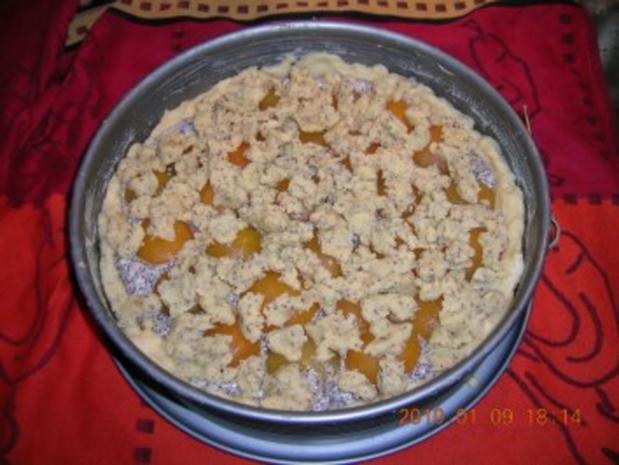 Aprikosen-Mohn-Kuchen - Rezept - Bild Nr. 2