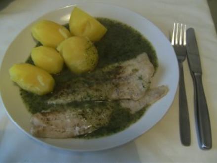 HAUPTGERICHT - Alaska-Seelachsfilet mit Dillsoße und Kartoffeln - Rezept