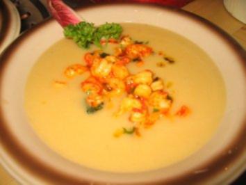 Suppe: Feine Chicoreesuppe mit Flußkrebsfleisch - Rezept
