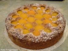 Schoko-Nusskuchen mit Aprikosen - Rezept