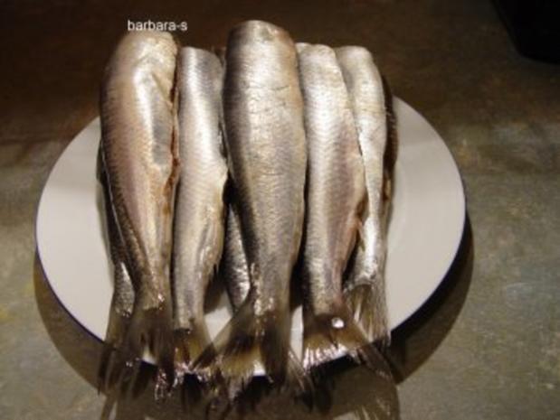 Fisch-Gerichte: Eingelegte Bratheringe - Rezept - Bild Nr. 2