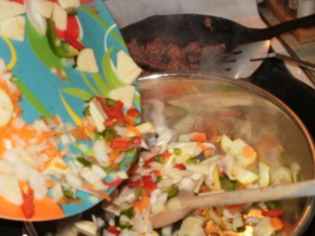 Hackfleisch -  Rind Stir Pfanne  mit allerlei Gemuesse  auf Pita Brot- Schnell und fettarm - Rezept - Bild Nr. 3