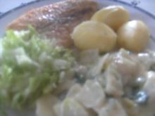 Pangasius-Filet mit Rahmkohlrabi  Salatbeilage - Rezept
