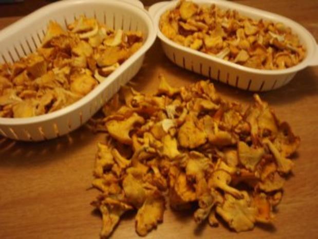 Eierschwammerl - Rahmgulasch mit Serviettenknödel - Rezept