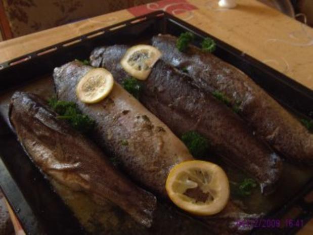 Fischsuppe - Rezept - Bild Nr. 3