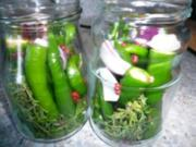 Chilifan`s eingelegte Peperoni - Rezept