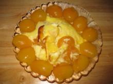 Saftiger Aprikosen-Quark-Auflauf - Rezept
