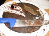 Amaretto-Sahne-Torte (garniert mit Marion's Amarena-Kirschen) - Rezept - Bild Nr. 6